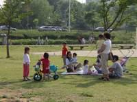 한강시민공원 이야기
